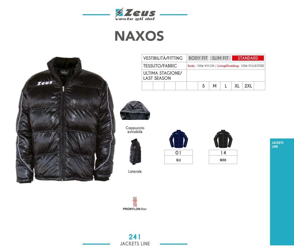 zeus-naxos